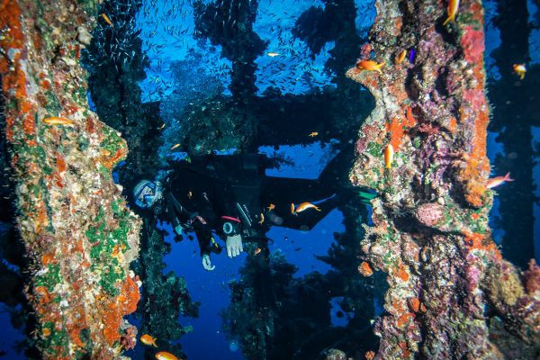 Scuba 2000 offer SSI wreck diving courses in the UK and Egypt