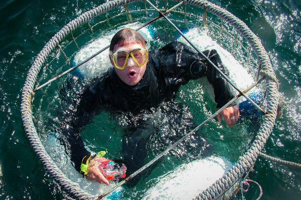 Scuba 2000 - cage diving with Great White Sharks in South Africa
